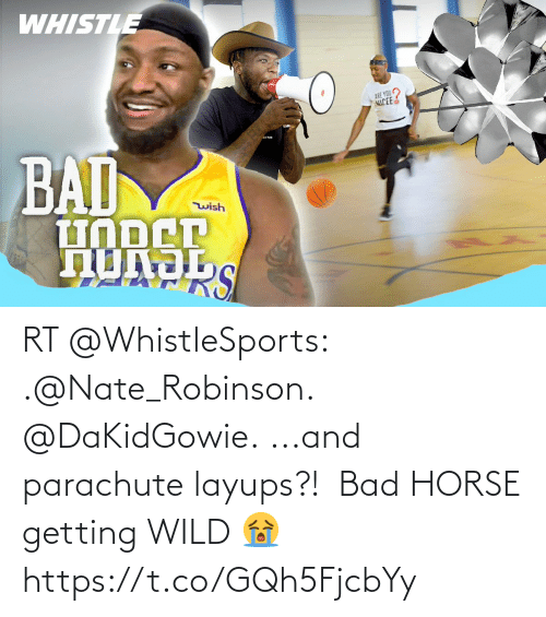 Horse: RT @WhistleSports: .@Nate_Robinson.  @DaKidGowie.  ...and parachute layups?!  🪂  Bad HORSE getting WILD 😭 https://t.co/GQh5FjcbYy