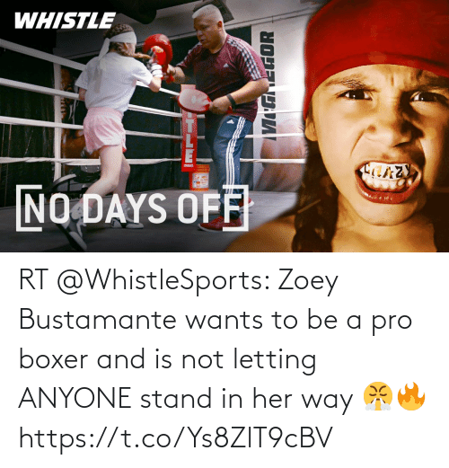 stand: RT @WhistleSports: Zoey Bustamante wants to be a pro boxer and is not letting ANYONE stand in her way 😤🔥  https://t.co/Ys8ZlT9cBV