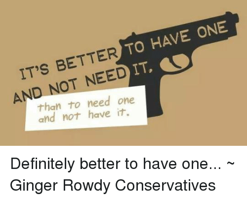 Definitely, Memes, and Rowdy: RTO HAVE ONE  DIT  IT'S BETTER  AND NOT NEED  than to need one  and not have it. Definitely better to have one... ~ Ginger  Rowdy Conservatives