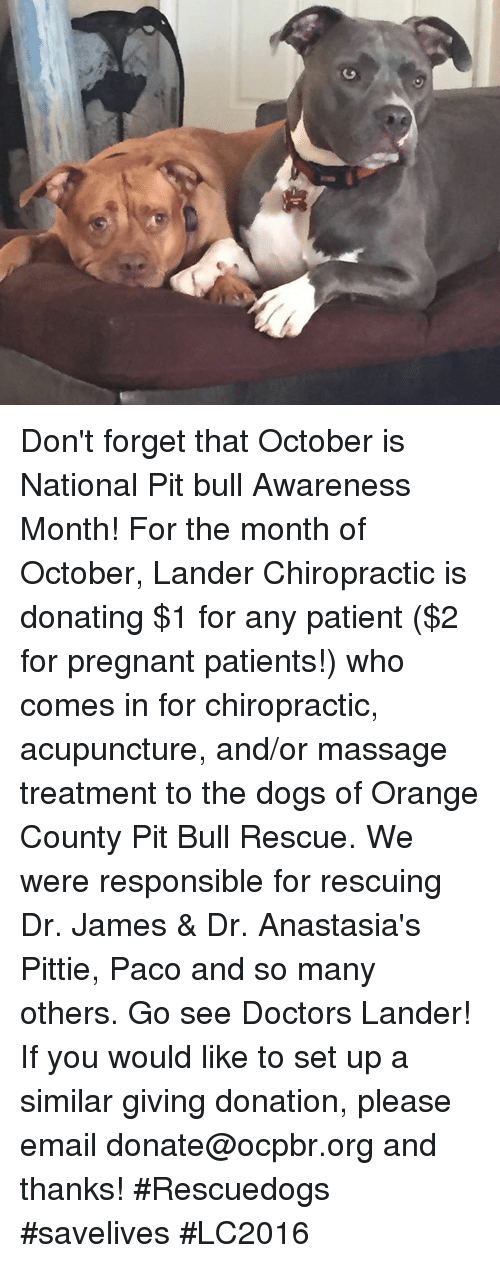 Acupuncture: rU Don't forget that October is National Pit bull Awareness Month! For the month of October, Lander Chiropractic is donating $1 for any patient ($2 for pregnant patients!) who comes in for chiropractic, acupuncture, and/or massage treatment to the dogs of Orange County Pit Bull Rescue. We were responsible for rescuing Dr. James & Dr. Anastasia's Pittie, Paco and so many others. Go see Doctors Lander!  If you would like to set up a similar giving donation, please email donate@ocpbr.org and thanks!  #Rescuedogs #savelives #LC2016