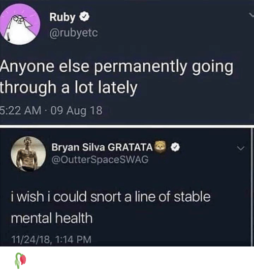ruby: Ruby  @rubyetc  Anyone else permanently going  through a lot lately  5:22 AM 09 Aug 18  Bryan Silva GRATATA  @OutterSpacesWAG  i wish i could snort a line of stable  mental health  11/24/18, 1:14 PM 🥀
