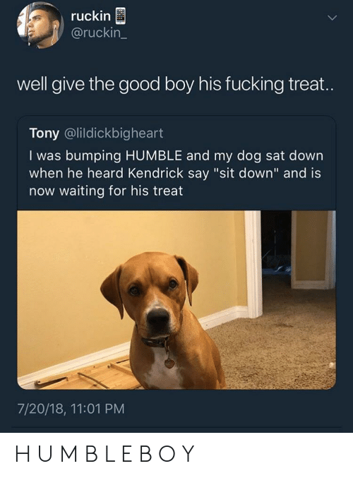 """m&b: ruckin  @ruckin_  well give the good boy his fucking treat.  Tony @lildickbigheart  I was bumping HUMBLE and my dog sat down  when he heard Kendrick say """"sit down"""" and is  now waiting for his treat  7/20/18, 11:01 PM H U M B L E B O Y"""