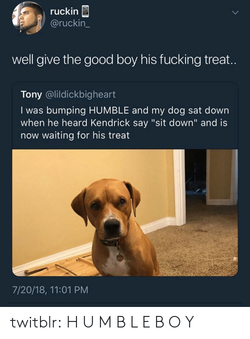 """m&b: ruckin  @ruckin_  well give the good boy his fucking treat.  Tony @lildickbigheart  I was bumping HUMBLE and my dog sat down  when he heard Kendrick say """"sit down"""" and is  now waiting for his treat  7/20/18, 11:01 PM twitblr:  H U M B L E B O Y"""