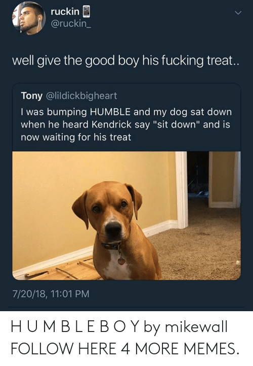 """m&b: ruckin  @ruckin_  well give the good boy his fucking treat.  Tony @lildickbigheart  I was bumping HUMBLE and my dog sat down  when he heard Kendrick say """"sit down"""" and is  now waiting for his treat  7/20/18, 11:01 PM H U M B L E B O Y by mikewall FOLLOW HERE 4 MORE MEMES."""