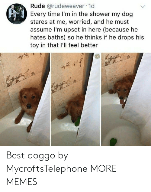 Baths: Rude @rudeweaver 1d  Every time I'm in the shower my dog  stares at me, worried, and he must  assume l'm upset in here (because he  hates baths) so he thinks if he drops his  toy in that I'll feel better Best doggo by MycroftsTelephone MORE MEMES