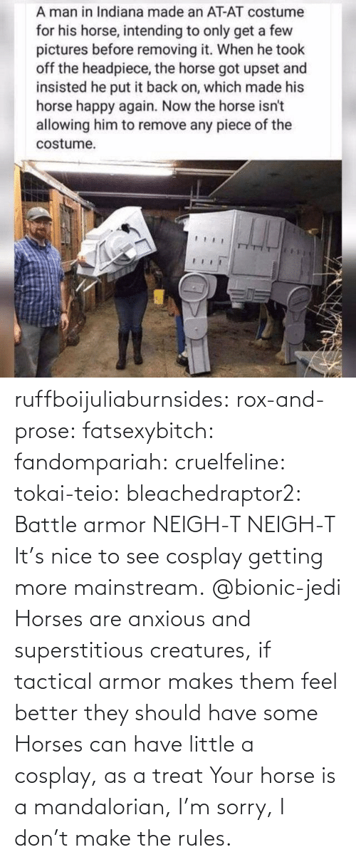 Horse: ruffboijuliaburnsides:  rox-and-prose:  fatsexybitch:   fandompariah:  cruelfeline:  tokai-teio:  bleachedraptor2: Battle armor    NEIGH-T  NEIGH-T    It's nice to see cosplay getting more mainstream.    @bionic-jedi     Horses are anxious and superstitious creatures, if tactical armor makes them feel better they should have some    Horses can have little a cosplay, as a treat  Your horse is a mandalorian, I'm sorry, I don't make the rules.