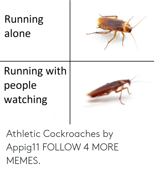 cockroaches: Running  alone  Running with  people  watching Athletic Cockroaches by Appig11 FOLLOW 4 MORE MEMES.