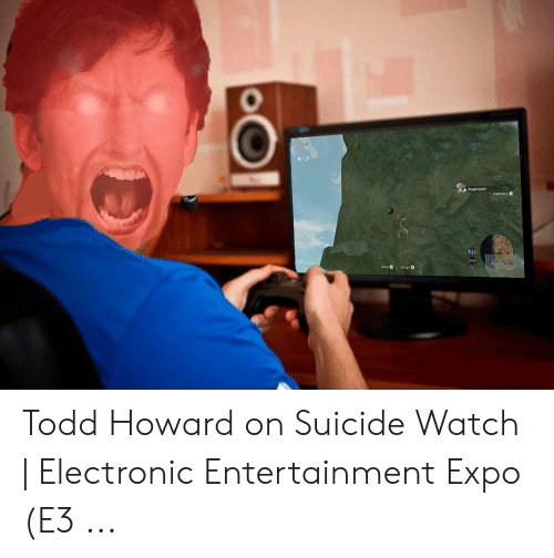 Suicide Watch Meme: Rusbroom  inventory O Todd Howard on Suicide Watch | Electronic Entertainment Expo (E3 ...