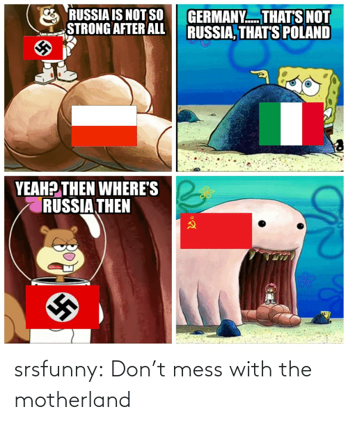 Mess With: RUSSIA IS NOT SO  STRONG AFTER ALL  GERMANY. THAT'S NOT  RUSSIA, THAT'S POLAND  YEAH? THEN WHERE'S  RUSSIA THEN srsfunny:  Don't mess with the motherland