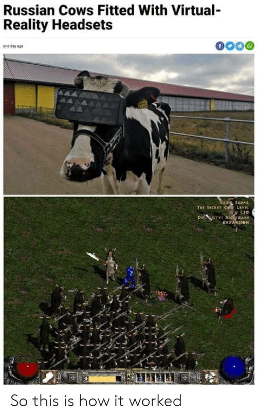 cows: Russian Cows Fitted With Virtual-  Reality Headsets  f  one day ago  GARE SADFI  THE SECET COR LEVEL  Di LTY NidmAR  EXPANSION So this is how it worked