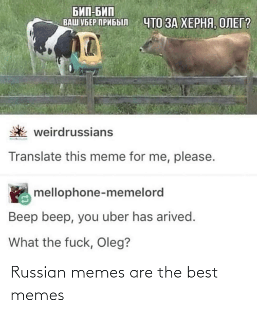 best memes: Russian memes are the best memes