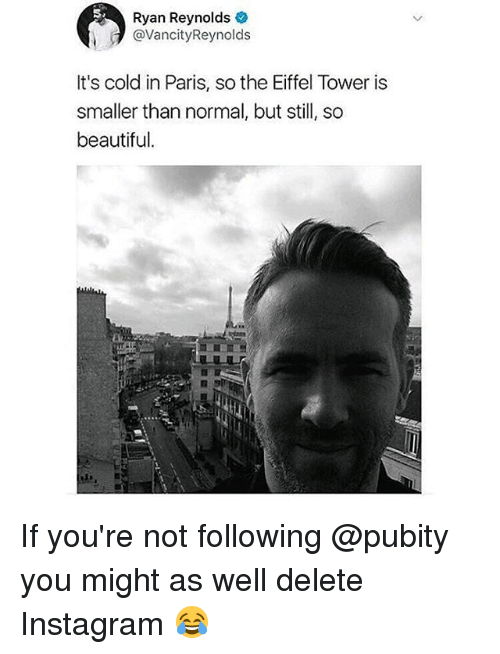 Beautiful, Instagram, and Memes: Ryan Reynolds  @VancityReynolds  It's cold in Paris, so the Eiffel Tower is  smaller than normal, but still, so  beautiful. If you're not following @pubity you might as well delete Instagram 😂