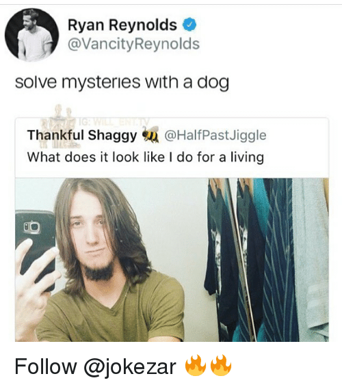 Memes, Ryan Reynolds, and What Does: Ryan Reynolds  @VancityReynolds  solve mysteries with a dog  IG  Thankful Shaggy蜄@HalfPastJiggle  What does it look like I do for a living Follow @jokezar 🔥🔥