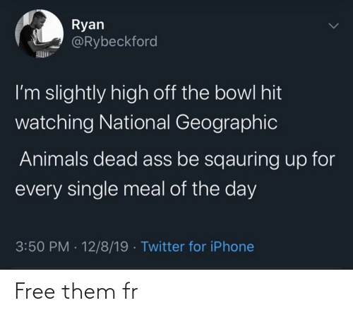 ryan: Ryan  @Rybeckford  I'm slightly high off the bowl hit  watching National Geographic  Animals dead ass be sqauring up for  every single meal of the day  3:50 PM · 12/8/19 · Twitter for iPhone Free them fr