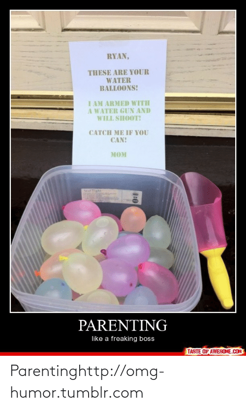 water balloons: RYAN,  THESE ARE YOUR  WATER  BALLOONS!  I AM ARMED WITH  A WATER GUN AND  WILL SHOOT!  CATCH ME IF YOU  CAN!  MOM  Seal Tight  PARENTING  like a freaking boss  TASTE OF AWESOME.COM Parentinghttp://omg-humor.tumblr.com