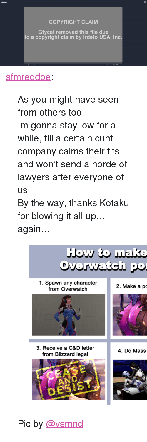 """kotaku: Rycot  COPYRIGHT CLAIM  Gfycat removed this file due  to a copyright claim by Irdeto USA, Inc  GIF HD <p><a class=""""tumblr_blog"""" href=""""http://sfmreddoe.tumblr.com/post/144961272464"""" target=""""_blank"""">sfmreddoe</a>:</p> <blockquote> <p>As you might have seen from others too.</p> <p>Im gonna stay low for a while, till a certain cunt company calms their tits and won't send a horde of lawyers after everyone of us.</p> <p>By the way, thanks Kotaku for blowing it all up… again…</p> <figure data-orig-width=""""592"""" data-orig-height=""""593"""" class=""""tmblr-full""""><img data-orig-width=""""592"""" data-orig-height=""""593"""" src=""""https://78.media.tumblr.com/e05d81fb7ec9c6f88642471bc2c318d5/tumblr_inline_o7slo1yGNu1twvie5_540.png""""/></figure><p>Pic by <a class=""""tumblelog"""" href=""""https://tmblr.co/muIfxhNi_wtY1DBYSQUOjgw"""" target=""""_blank"""">@vsmnd</a><br/></p> </blockquote>"""