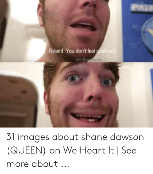 Shane Dawson Memes: Ryland: You don't feel 31 images about shane dawson (QUEEN) on We Heart It   See more about ...