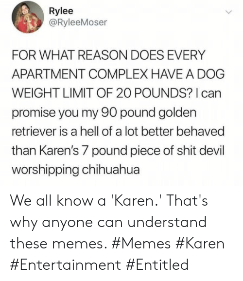 chihuahua: Rylee  @RyleeMoser  FOR WHAT REASON DOES EVERY  APARTMENT COMPLEX HAVE A DOG  WEIGHT LIMIT OF 20 POUNDS? I can  promise you my 90 pound golden  retriever is a hell of a lot better behaved  than Karen's 7 pound piece of shit devil  worshipping chihuahua We all know a 'Karen.' That's why anyone can understand these memes. #Memes #Karen #Entertainment #Entitled