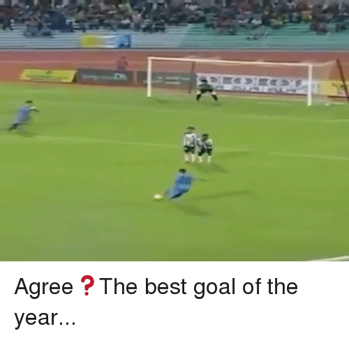 best goals: S'匷カ»:tra Agree❓The best goal of the year...