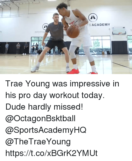 Dude, Memes, and Academy: S ACADEMY  SPORTSs Trae Young was impressive in his pro day workout today. Dude hardly missed! @OctagonBsktball @SportsAcademyHQ @TheTraeYoung https://t.co/xBGrK2YMUt
