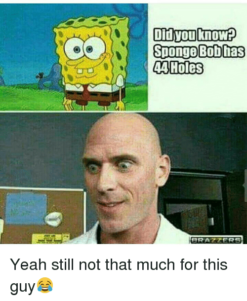 Memes, Holes, and Brazzers: s Didyou know  SpongeBob has  44 Holes  BRAZZERS Yeah still not that much for this guy😂
