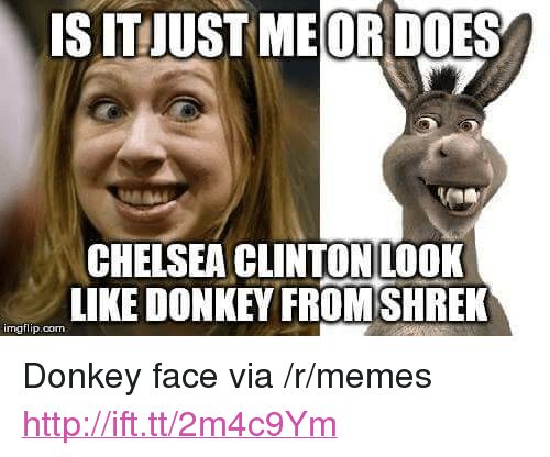 """memes: S IT JUST MEOR DOES  CHELSEA CLINTONILOOK  LIKE DONKEMHRE  imgflip.com <p>Donkey face via /r/memes <a href=""""http://ift.tt/2m4c9Ym"""">http://ift.tt/2m4c9Ym</a></p>"""