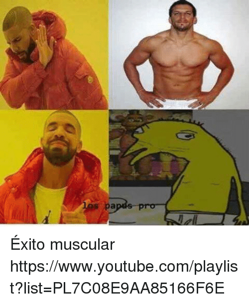 Memes, 🤖, and Https: s ,pa  n Éxito muscular https://www.youtube.com/playlist?list=PL7C08E9AA85166F6E