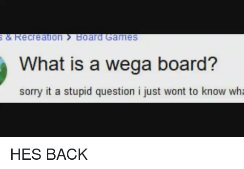 stupid questions: S & Recreation Board Games  What is a wega board?  sorry it a stupid question i just wont to know wha HES BACK