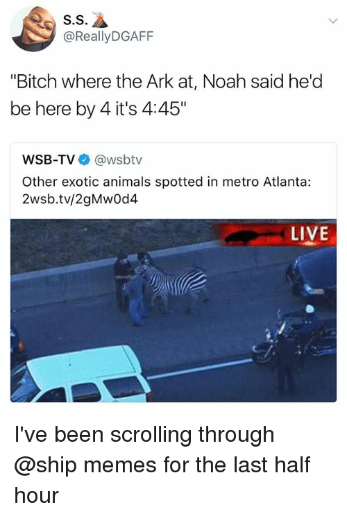 "Animals, Bitch, and Memes: S.S  @ReallyDGAFF  ""Bitch where the Ark at, Noah said he'd  be here by 4 it's 4:45""  WSB-TV @wsbtv  Other exotic animals spotted in metro Atlanta:  2wsb.tv/2gMwOd4  LIVE I've been scrolling through @ship memes for the last half hour"