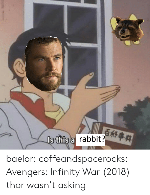 Avengers Infinity War: s this a  rabbit? baelor:  coffeandspacerocks: Avengers: Infinity War (2018) thor wasn't asking
