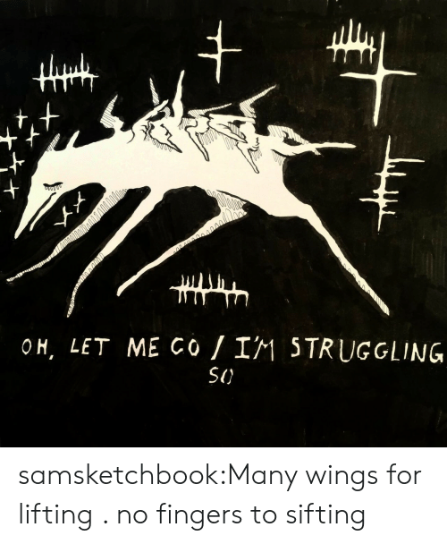 lifting: +  s004000  OH, LET ME Co I1 5TRUGGLING  SI) samsketchbook:Many wings for lifting . no fingers to sifting