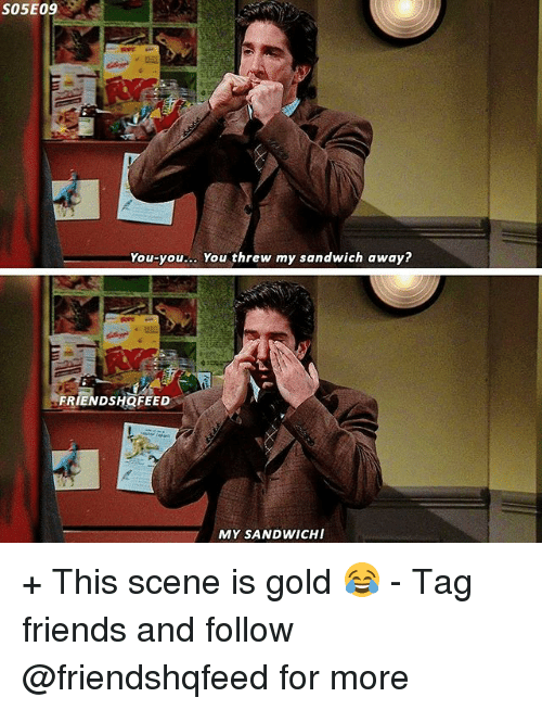 Threws: S05E09  You-you... You threw my sandwich away?  FRIENDSHQFEED  MY SANDWICH + This scene is gold 😂 - Tag friends and follow @friendshqfeed for more