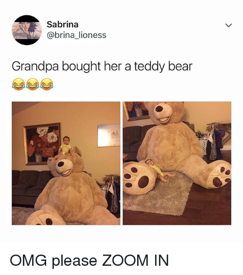 Omg, Zoom, and Grandpa: Sabrina  @brina lioness  Grandpa bought her a teddy bear OMG please ZOOM IN