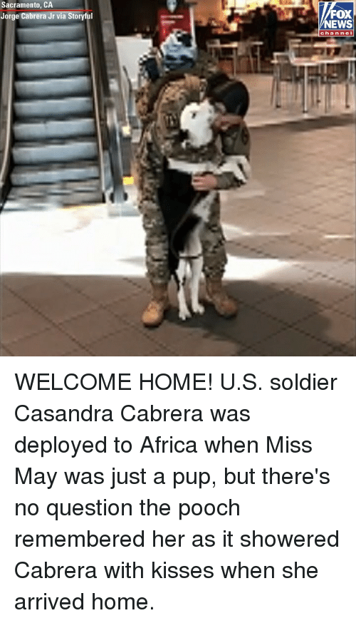 welcome-home: Sacramento, CA  Jorge Cabrera Jr via Storyful  FOX  NEWS  channel WELCOME HOME! U.S. soldier Casandra Cabrera was deployed to Africa when Miss May was just a pup, but there's no question the pooch remembered her as it showered Cabrera with kisses when she arrived home.