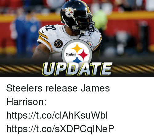 Memes, Steelers, and James Harrison: Sadlers  Steelers  PDATE Steelers release James Harrison: https://t.co/clAhKsuWbl https://t.co/sXDPCqINeP