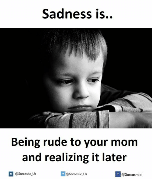 Mom, Your Mom, and Lateral: Sadness is..  Being rude to your mom  and realizing it later  @sarcastic us  If @sarcastic Us  @Sarcasmlol