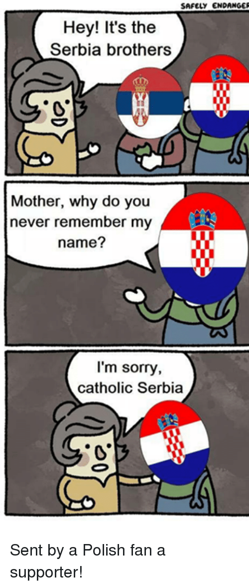 Serbiaball: SAFELY ENDANGER  Hey! It's the  Serbia brothers  Mother, why do you  never remember my  name?  I'm sorry,  catholic Serbia Sent by a Polish fan a supporter!