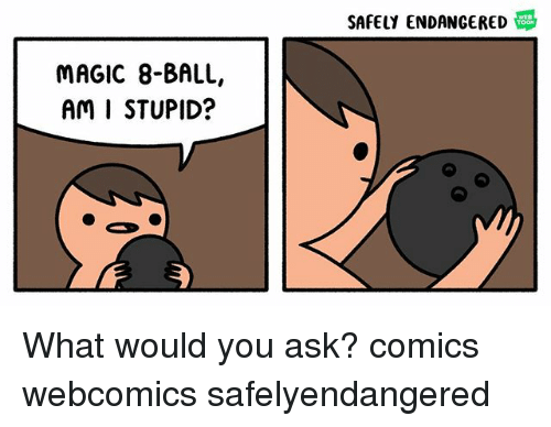 stupider: SAFELY ENDANGERED  MAGIC 8-BALL,  AM I STUPID? What would you ask? comics webcomics safelyendangered