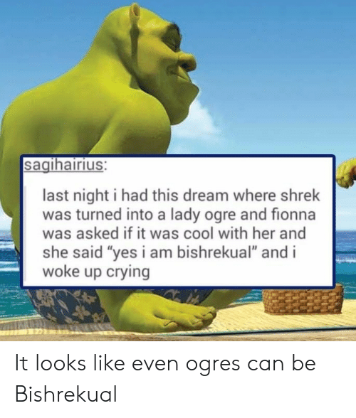 """she said yes: sagihairius:  last night i had this dream where shrek  was turned into a lady ogre and fionna  was asked if it was cool with her and  she said """"yes i am bishrekual"""" and i  woke up crying It looks like even ogres can be Bishrekual"""