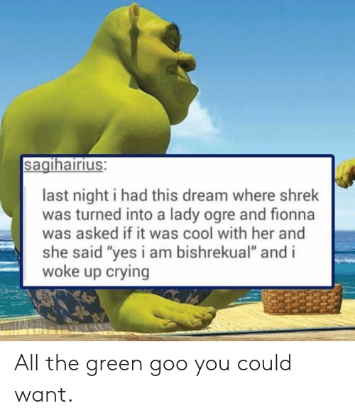 "goo: sagihairius:  last night i had this dream where shrek  was turned into a lady ogre and fionna  was asked if it was cool with her and  she said ""yes i am bishrekual"" and i  woke up crying All the green goo you could want."