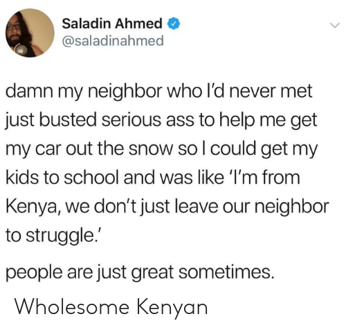 Kenyan: Saladin Ahmed  @saladinahmed  damn my neighbor who l'd never met  just busted serious ass to help me get  my car out the snow so l could get my  kids to school and was like 'I'm from  Kenya, we don't just leave our neighbor  to struggle.  people are just great sometimes. Wholesome Kenyan