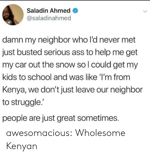 Kenyan: Saladin Ahmed  @saladinahmed  damn my neighbor who l'd never met  just busted serious ass to help me get  my car out the snow so l could get my  kids to school and was like 'I'm from  Kenya, we don't just leave our neighbor  to struggle.  people are just great sometimes. awesomacious:  Wholesome Kenyan