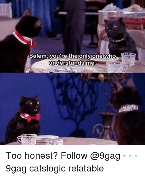 Salemance: Salem, you're the only one who  understands  me. Too honest? Follow @9gag - - - 9gag catslogic relatable