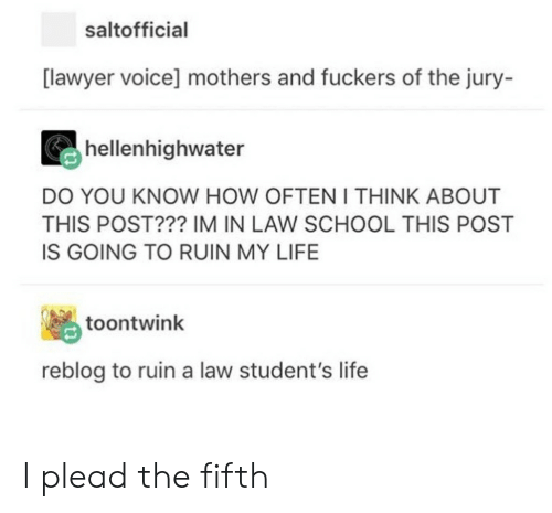 plead: saltofficial  [lawyer voice] mothers and fuckers of the jury-  hellenhighwater  DO YOU KNOW HOW OFTEN I THINK ABOUT  THIS POST??? IM IN LAW SCHOOL THIS POST  IS GOING TO RUIN MY LIFE  toontwink  reblog to ruin a law student's life I plead the fifth