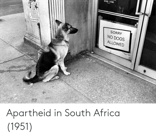Apartheid: SAM-3PM.  SORRY  NO DOGS  ALLOWED Apartheid in South Africa (1951)