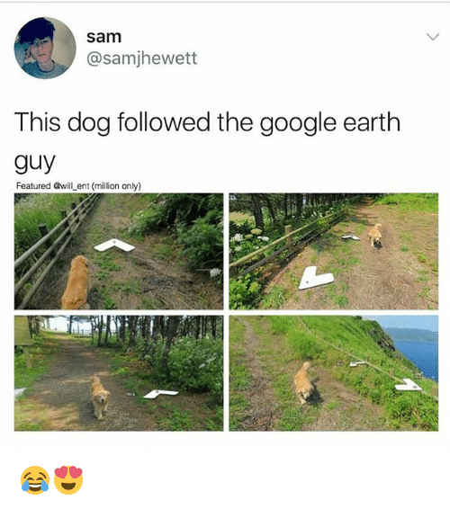 Google, Memes, and Earth: sam  @sam jhewett  This dog followed the google earth  guy  Featured @will ent (million only) 😂😍