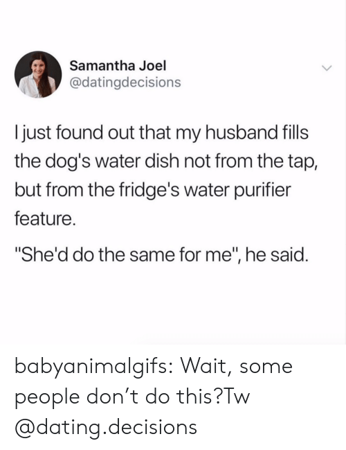 """Dont Do This: Samantha Joel  @datingdecisions  I just found out that my husband fills  the dog's water dish not from the tap,  but from the fridge's water purifier  feature.  She'd do the same for me"""", he said. babyanimalgifs:  Wait, some people don't do this?Tw @dating.decisions"""