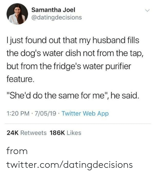 """joel: Samantha Joel  @datingdecisions  I just found out that my husband fills  the dog's water dish not from the tap,  but from the fridge's water purifier  feature.  """"She'd do the same for me"""", he said.  1:20 PM 7/05/19 Twitter Web App  24K Retweets 186K Likes from twitter.com/datingdecisions"""