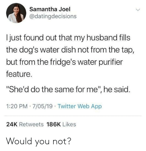 """joel: Samantha Joel  @datingdecisions  I just found out that my husband fills  the dog's water dish not from the tap,  but from the fridge's water purifier  feature.  """"She'd do the same for me"""", he said.  1:20 PM 7/05/19 Twitter Web App  24K Retweets 186K Likes Would you not?"""