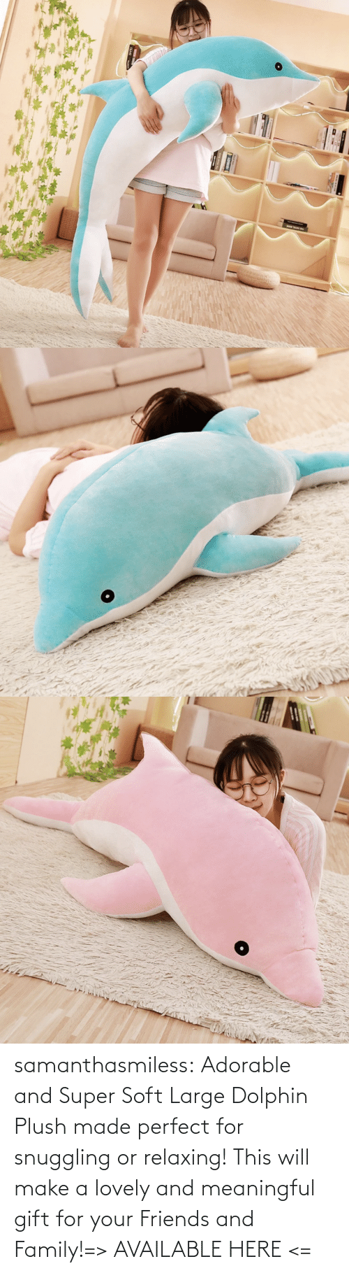 Adorable: samanthasmiless:  Adorable and Super Soft Large Dolphin Plush made perfect for snuggling or relaxing! This will make a lovely and meaningful gift for your Friends and Family!=> AVAILABLE HERE <=